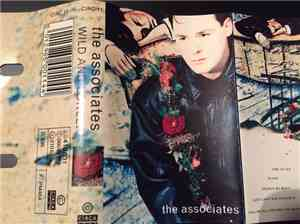 The Associates - Wild And Lonely mp3 flac